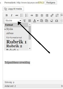 Välja rubrik i WordPress